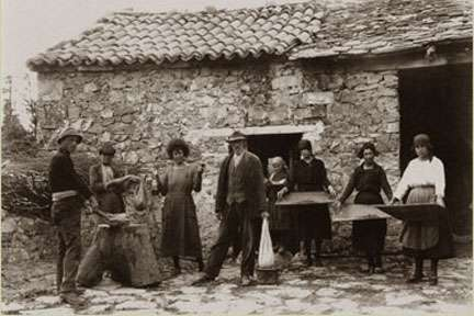 chestnuts old photo of farmers