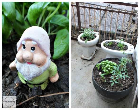 garden dwarf dbl