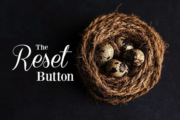 the reset button